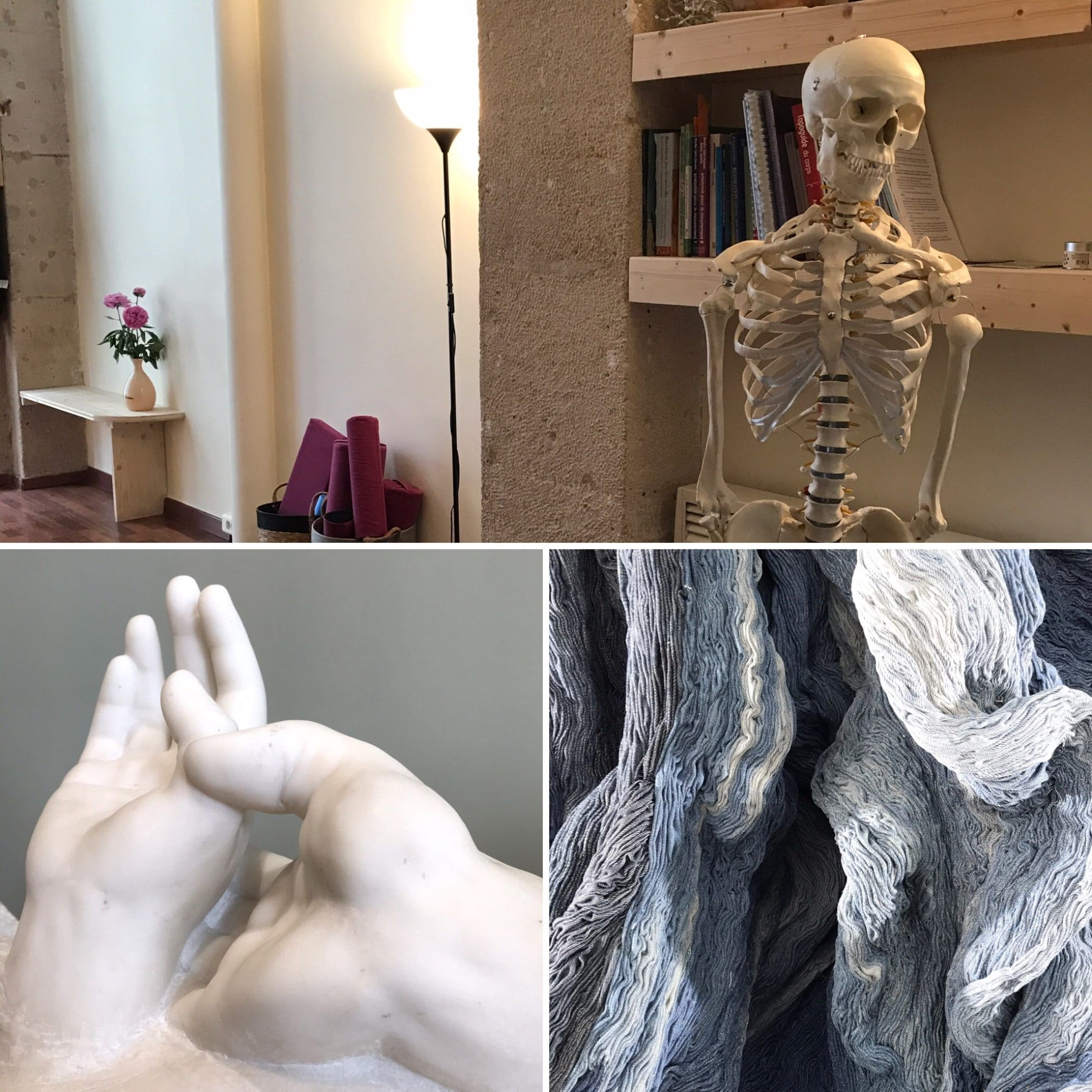 ateliers d'anatomie